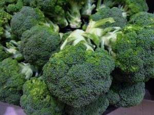 Image of broccoli, which has anti cancer compounds