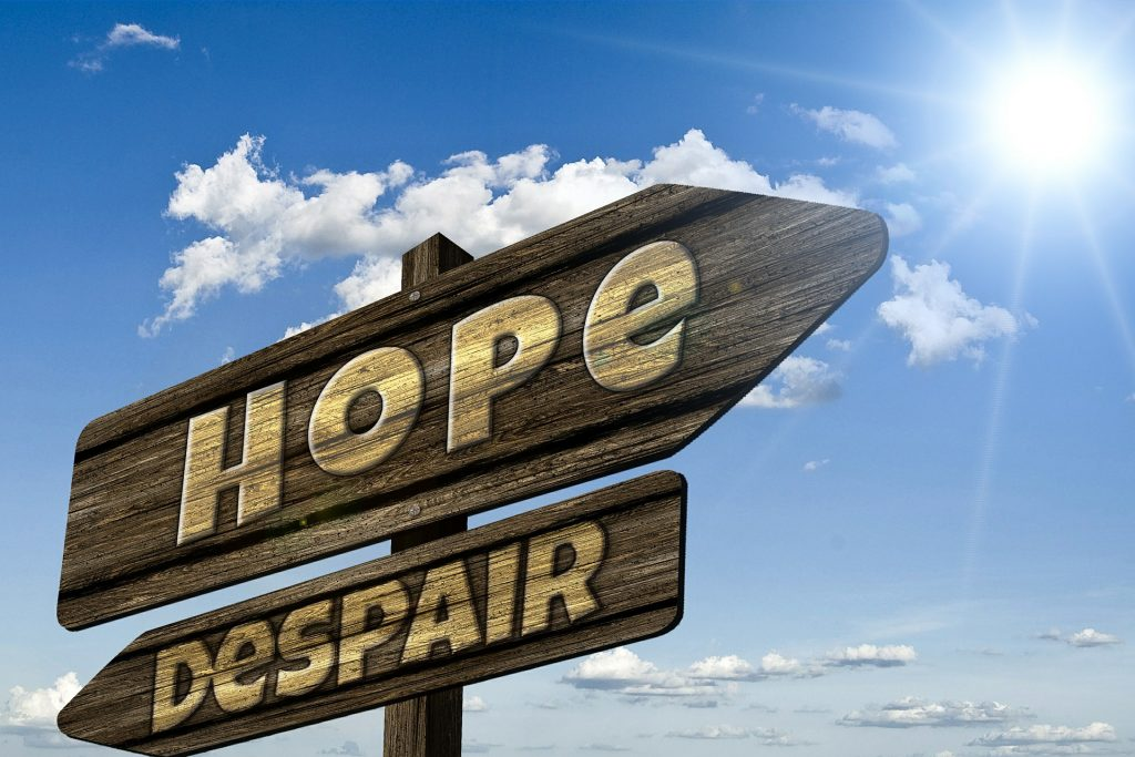 """A street sign pointing in one direction to """"Hope"""" and the other direction to """"Despair."""""""