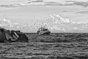 Motion Sickness - Grayscale image of a boat on a rough sea