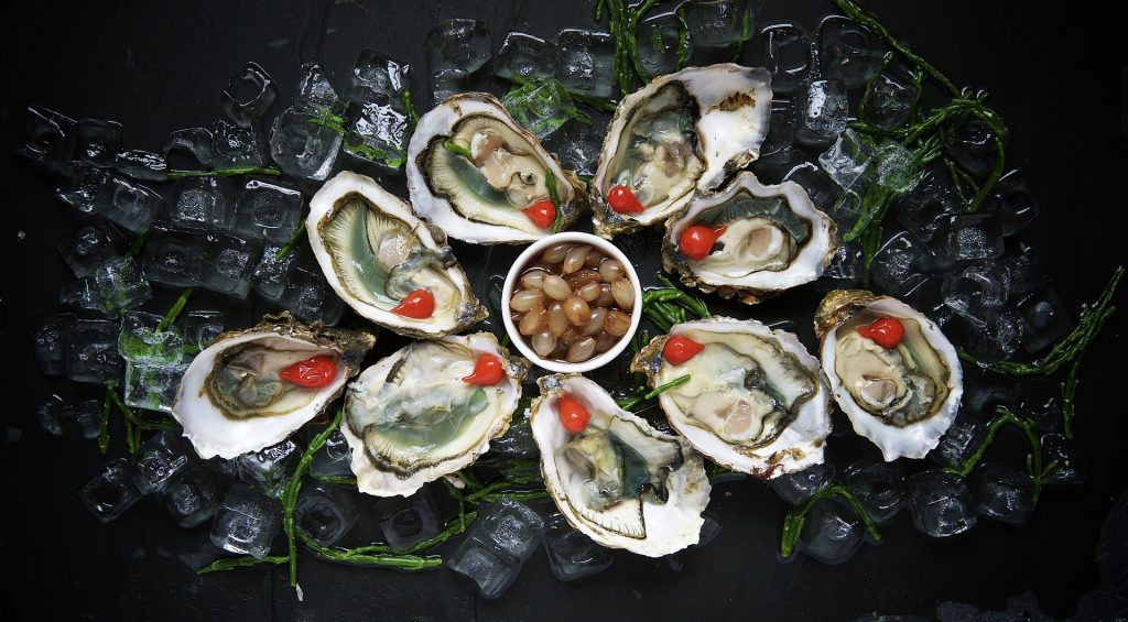 Image of oysters on the half shell