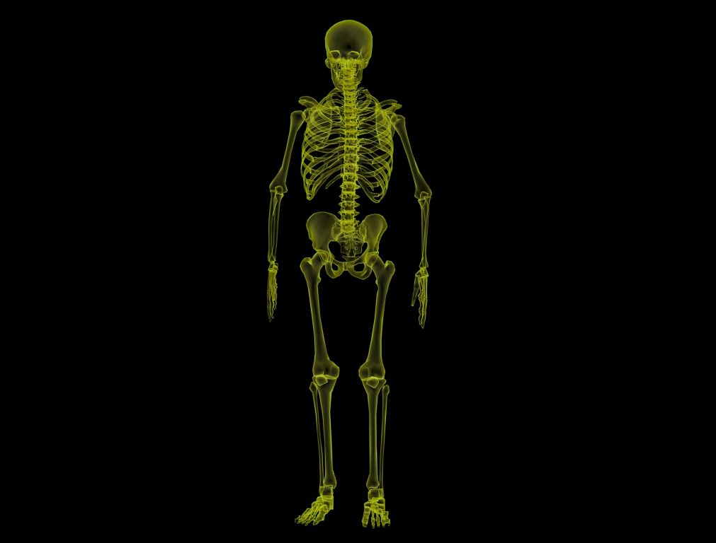 Chiropractic - Glowing green skeleton against black background
